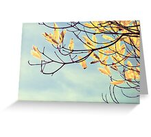 Windy and Gold Greeting Card