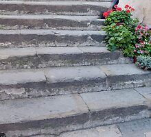 Stone Steps Made New by phil decocco