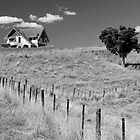 House on the Hill by Brian Scurfield
