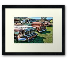 Grilles on the Hill Framed Print