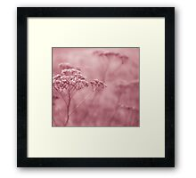Nature in pink Framed Print