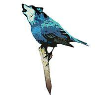 Word - Wolf-Bird Photographic Print