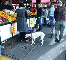 Queen Victoria market... by Maggie Hegarty by Shot in the Heart of Melbourne, 2013