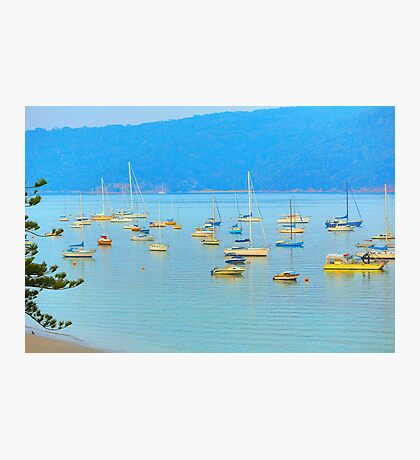 Palmy (Colloquial for Palm Beach) Photographic Print