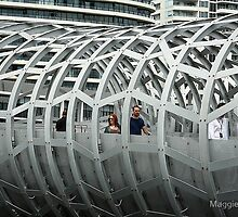 Framed in steel... by Maggie Hegarty by Shot in the Heart of Melbourne, 2013