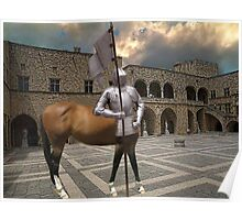 ☆.¸¸.{KNIGHT- MARE} LOL.. AT COURT YARD GRAND MASTERS PALACE RHODES GREECE☆.¸¸. Poster