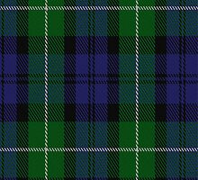 01884 Campbell of Argyll (Smith) Clan/Family Tartan Fabric Print Iphone Case by Detnecs2013