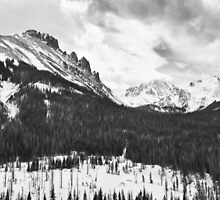 Never Summer Wilderness Area Panorama BW by Bo Insogna