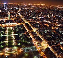 The City of Romance - Paris by annazav