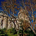 Majestic Combourg castle by Karo  Evans
