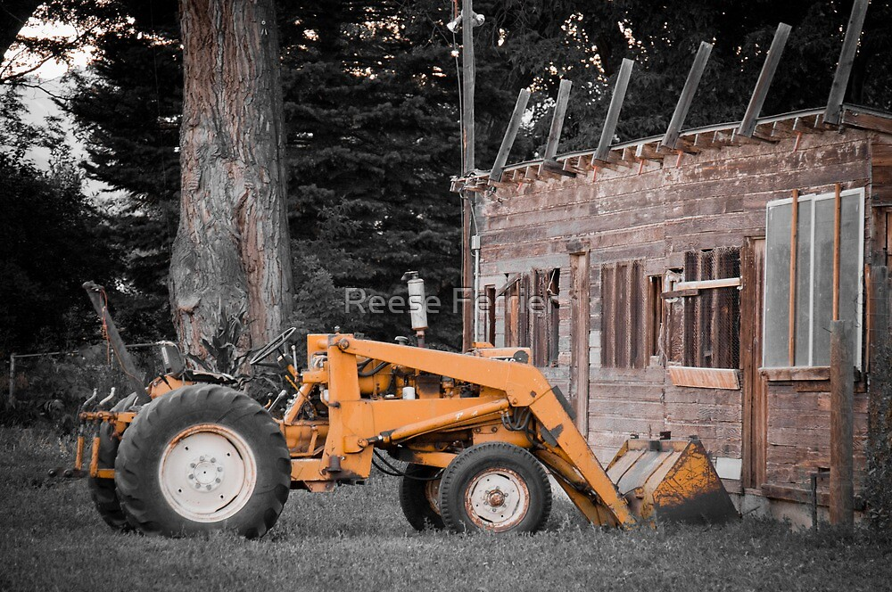 Old Yellow Tractor by Reese Ferrier