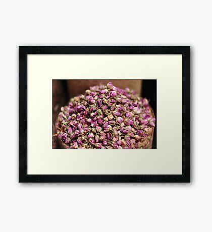 Rose petal beauty  Framed Print