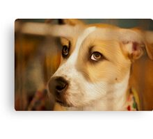 Act of DOG in Oil Canvas Print