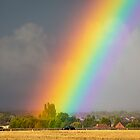 Rainbow over Cornfield by Flobpic