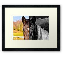 half horse  Framed Print