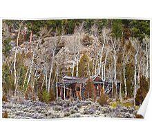 Rural Rustic Rundown Rocky Mountain Cabin Poster
