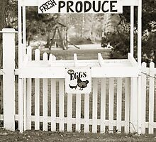 Vintage Produce Stand by capturedbykt