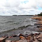 Killbear Prov Park by Debbie Oppermann