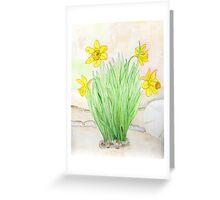 Daffodils Spring 2013 Greeting Card