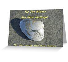 Top Ten Winner - Sea Shells Greeting Card