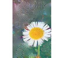 Flower ecstasy Photographic Print