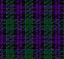 01895 Campbell, Sir Walter Scott Tartan Fabric Print Iphone Case by Detnecs2013