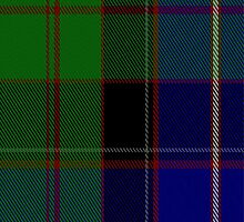 01904 Canadian Estate Tartan Fabric Print Iphone Case by Detnecs2013