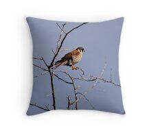 sparrow hawk Throw Pillow