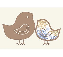Sweet Damask Blue Chicks Photographic Print