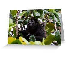 Howler and Baby Greeting Card