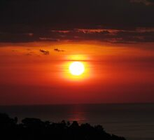 Manuel Antonio Sunset by Carol Bock