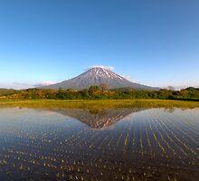 Mt Yotei & rice field by Paul Malandain