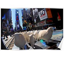 42nd street- sheep 2 Poster