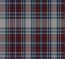 01906 Canadian Winter Games 1987 Tartan Fabric Print Iphone Case by Detnecs2013