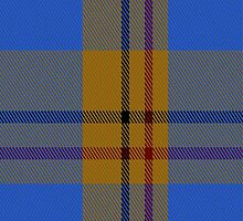 01914 Carlisle Family Tartan Fabric Print Iphone Case by Detnecs2013