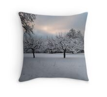 Winter Wonderland, Germany Throw Pillow