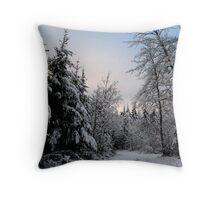 Winter Wonderland, Germany (2) Throw Pillow