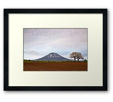 Two trees & Mt Yotei Framed Print