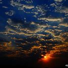 Shine by Dhrupal Soni