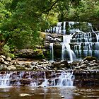 Liffey Falls by Chris  Randall