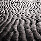 Moreton Bay, QLD by CourtneyAnne82