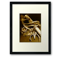 A Soldiers Campaign Memories Framed Print