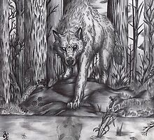 Wolf in the wood by Furiarossa