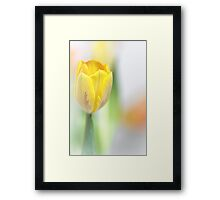 Joy and happiness... Framed Print