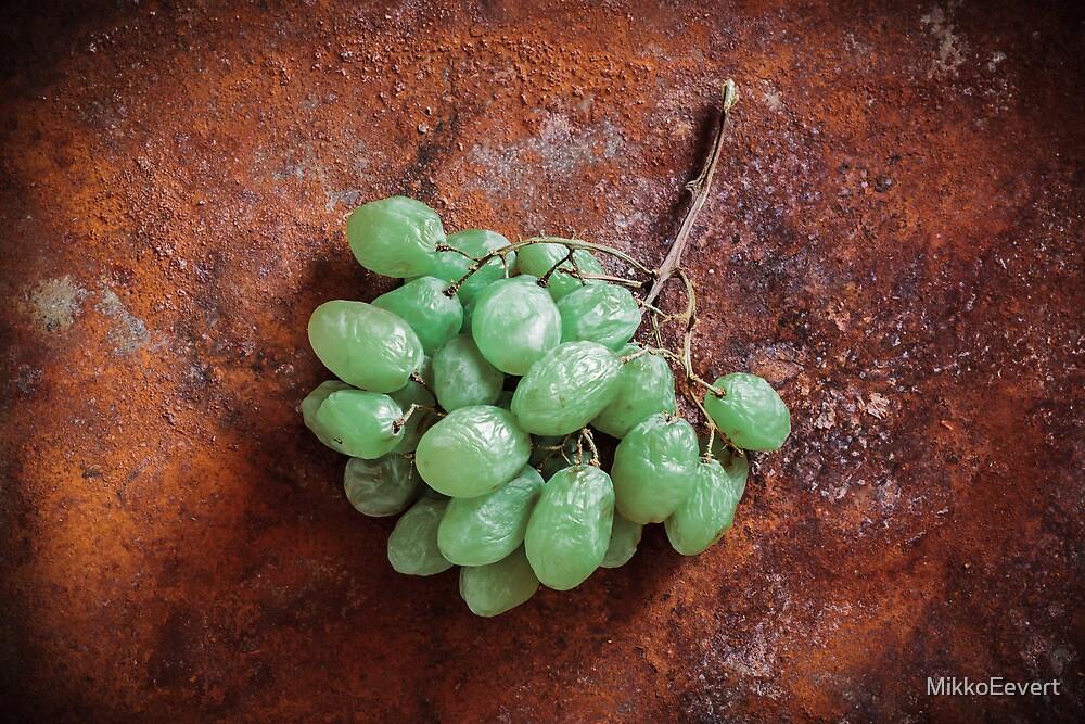 Vitis vinifera by MikkoEevert