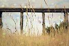 Kilcunda trestle bridge  by Melissa Dickson