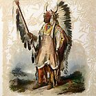"""Mató-Tope, a Mandan chief"" from an aquatint by Karl Bodmer by Dennis Melling"