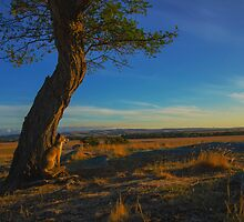 """My Country - """"Watching days end"""" by bekyimage"""