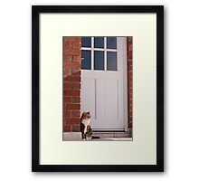 House Warming Framed Print