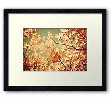 Vintage Pink Spring Flowers Framed Print